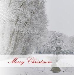 Kerstkaart klassiek: Kerstkaart met wit sneeuwlandschap. Klassieke kerstkaarten online maken en versturen. Kies een mooie klassieke kerstkaart, schrijf de tekst, en met een druk op de knop, worden alle kerstkaarten voor u gedrukt en via PostNL verstuurd! http://www.kerstkaartensturen.nl/kerstkaarten/kerst-klassiek/
