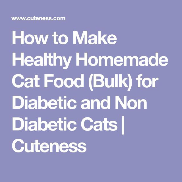 How to Make Healthy Homemade Cat Food (Bulk) for Diabetic and Non Diabetic Cats | Cuteness
