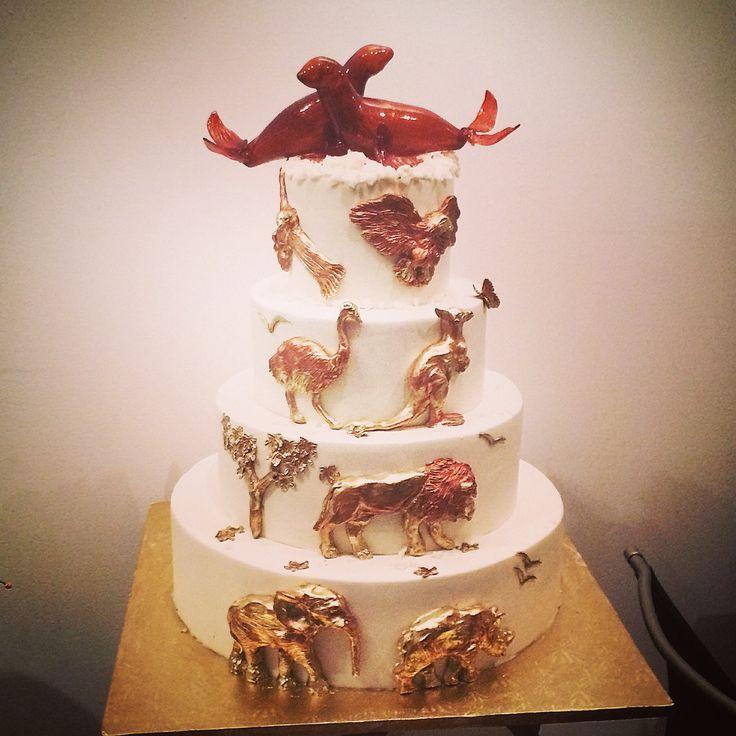 animal: seal, sea lion, walrus,manatee on Pinterest  Birthday cake ...