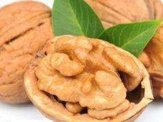Vlašské ořechy jsou do slova dar z nebes. Takto je můžete používat i vy. O tomto všeléku věděly už naše babičky