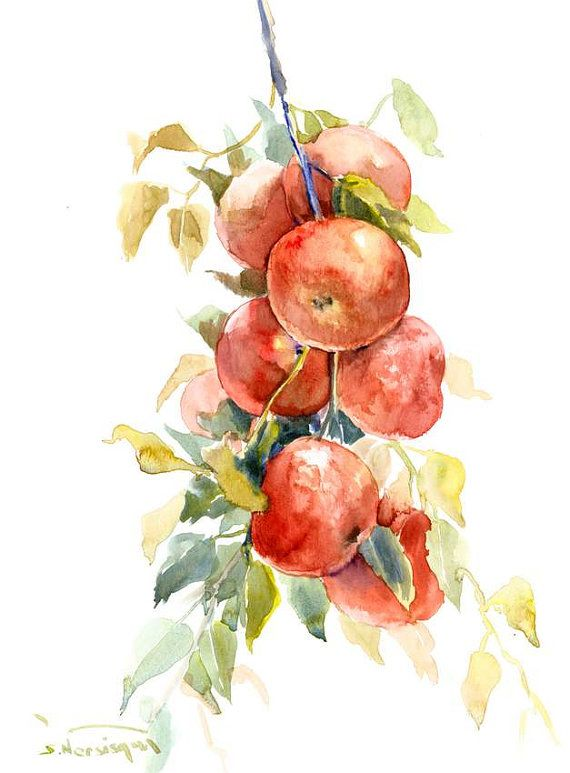 Red Apples Painting, Red Green Art, Kitchen Wall Art Original Watercolor  Painting 16 X 12 In