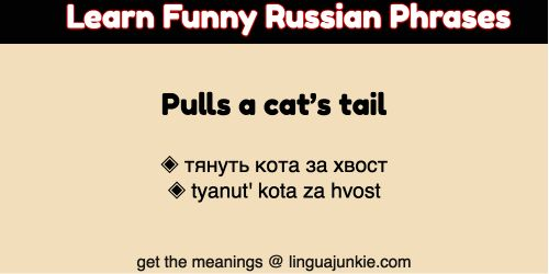 funny russian phrases