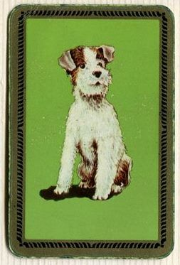 Swap Cards_ dogs_cute dog on green, gold border