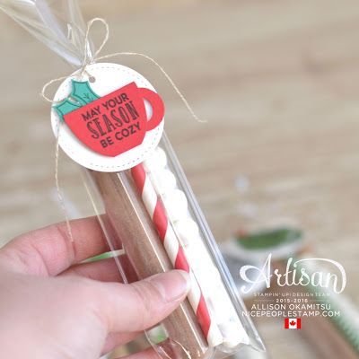 nice people STAMP!: Test Tube Hot Chocolate Giftables: Fancy Friday by Canadian Stampin' Up! Demonstrator Allison Okamitsu. www.NicePeopleStamp.com