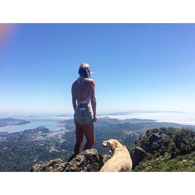 California National, State, Regional & Local Parks - CaliParks : Mount Tamalpais State Park