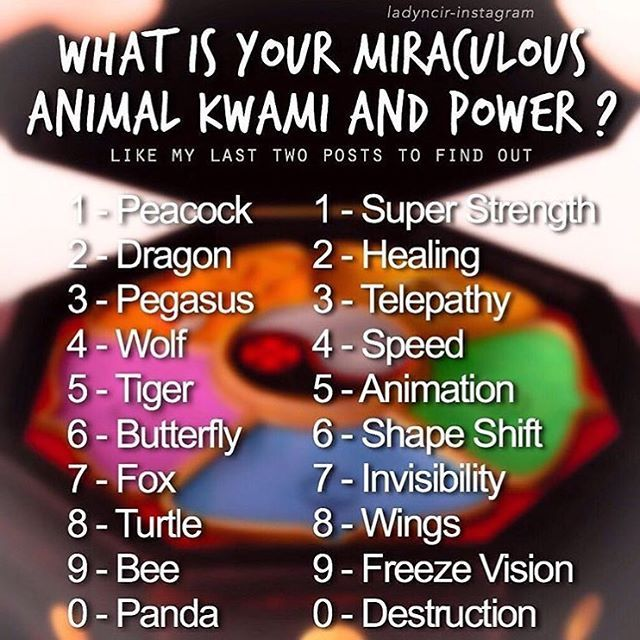 I Have The Turtle Kwami And My Power Is Shape Shift
