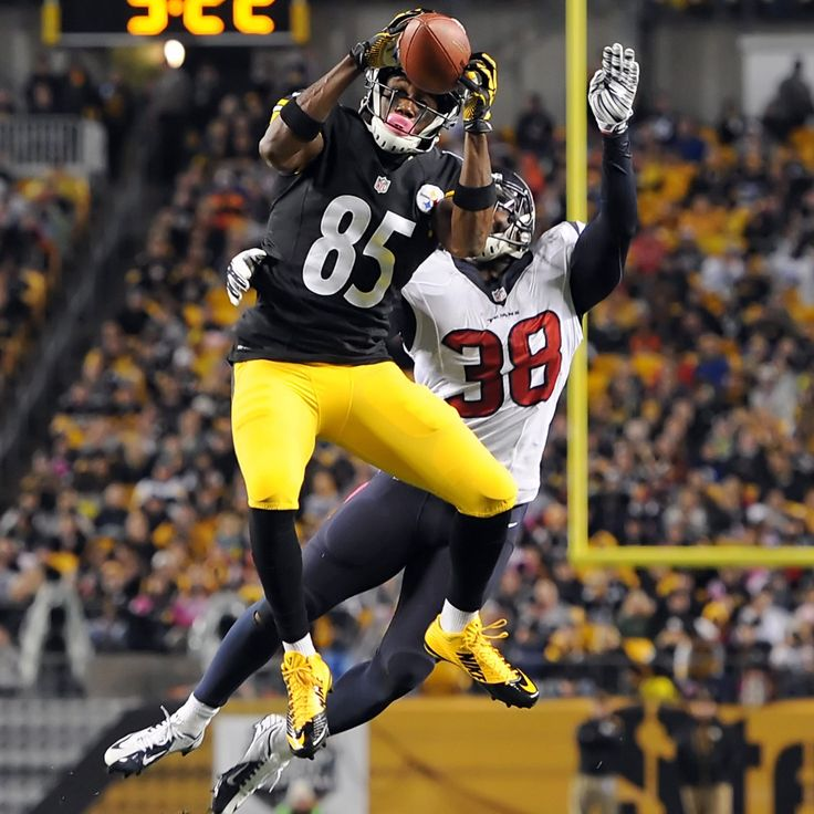 Darrius Heyward-Bey  WR  (#85, 88)  2014+.2015 stats: 21 catches for 314 yrds and 2 TDs. Is 3rd WR behind Antonio Brown and Markus Wheaton, and the suspension of Martavis Bryant.  2016 signed a 3 yr contract