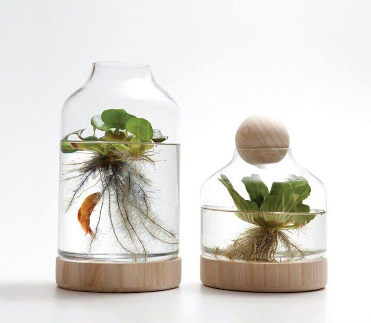 Estes vasos com água dão um efeito interessante na decoração
