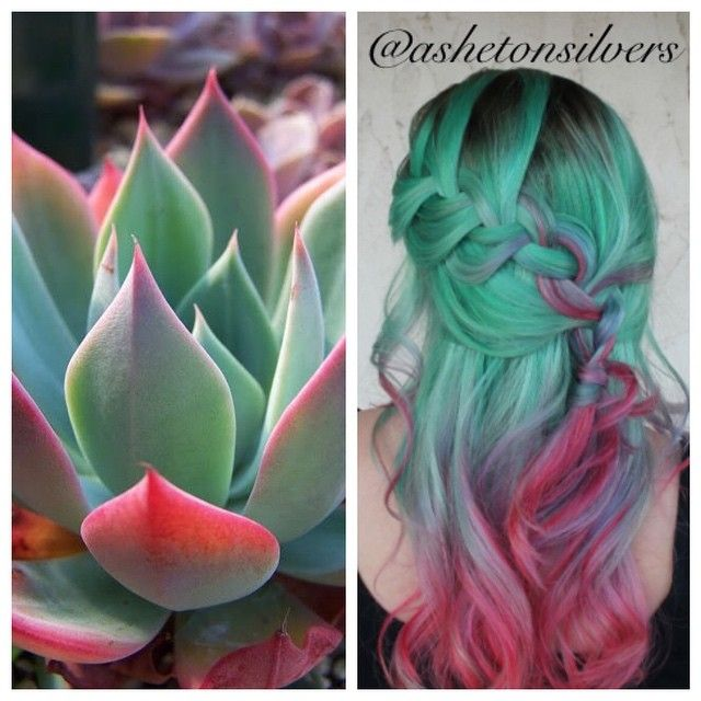 Gorgeous inspiration hair color design and style based on the Southwest's beautiful succulent plants by Asheton Silvers hotonbeauty pastel green hair color melt