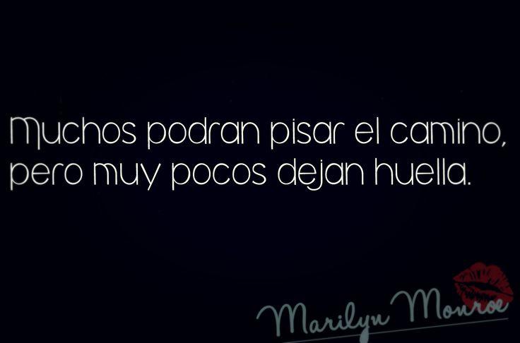 Frases Marilyn Monroe                                                                                                                                                      Más
