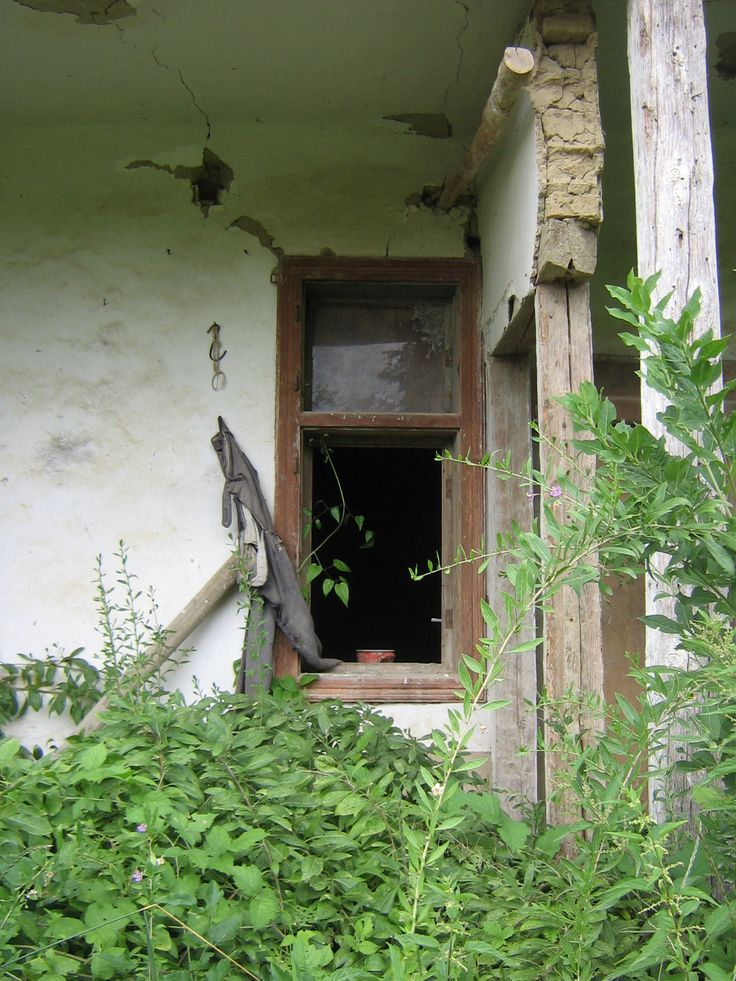 Abandoned house near the forest (Kis Kövesd)