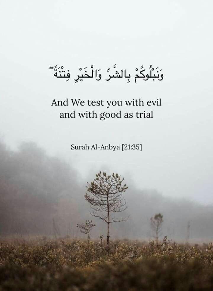 Pin By Dina Afifi On الحمد لله Quran Quotes Islamic Quotes Quran Beautiful Quran Quotes