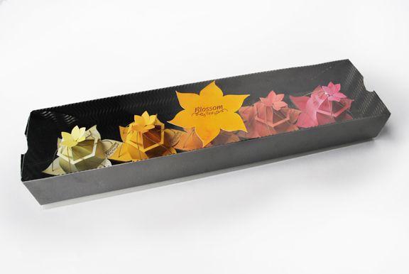 Blossom Tea Packaging - Christina Rees