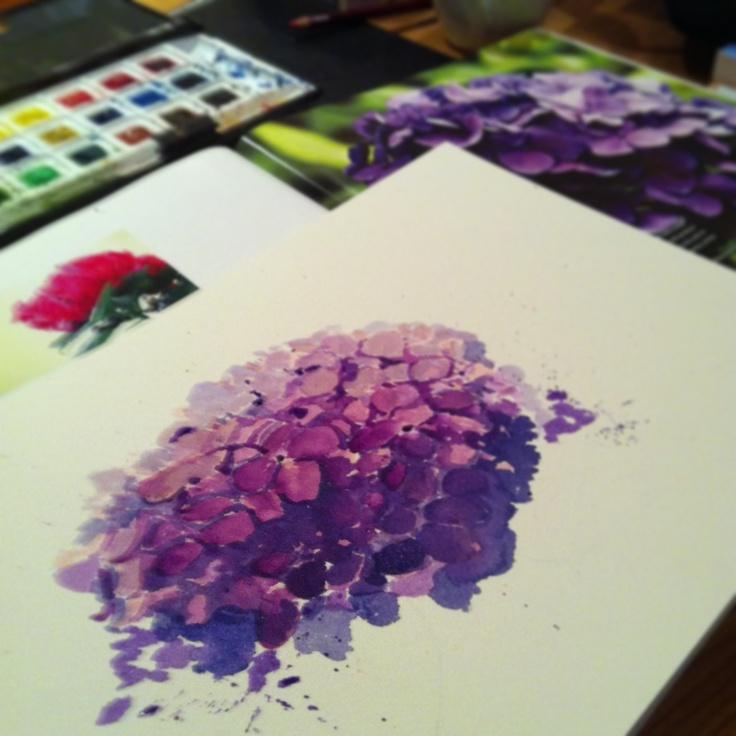 #watercolours #flowers #hydrangea #purple