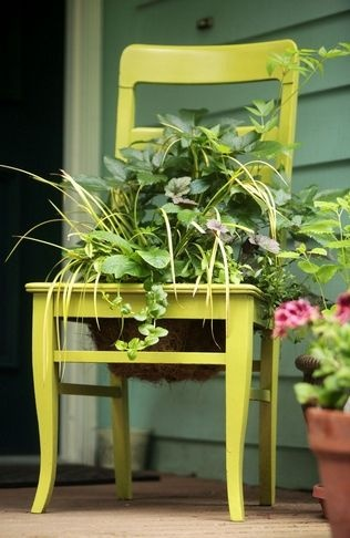 Take your pick of plant sales this spring – For the Home
