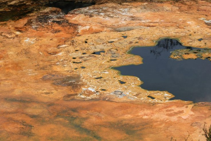 Richly coloured algal mats make Orakei Korako one of Taupo / Rotorua's most beautiful geothermal attractions.