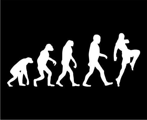 evolution #muay #thai