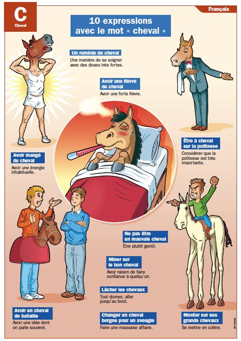 """10 expressions avec le mot """"cheval"""""""