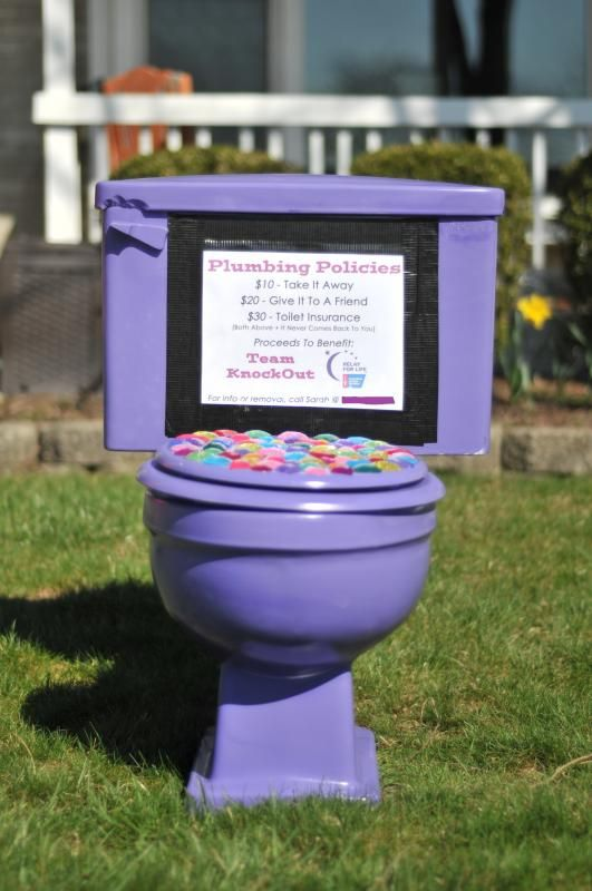 Basically, you drop the potty on a lawn, and the homeowner has to pay to have it removed. $10 for removal, $20 to move it to a friend's house, and $30 for the above + the promise that it won't come back to them. Include a nice letter explaining what the fundraising effort is for. :)