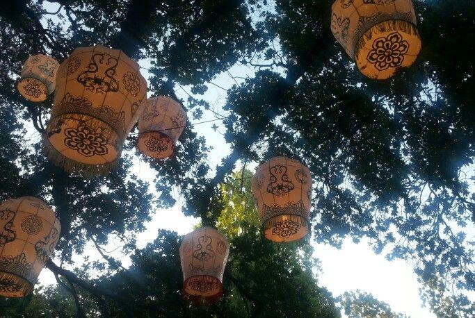 Lanterns at auckland lanterns festival 2014