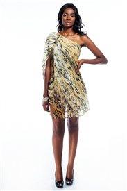Rent this Roberto Cavalli dress from www.wantmewearme.co.za
