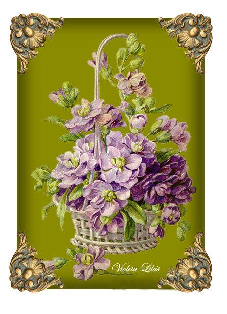 Rosas de Verônica: Cartão com flores violeta e lilás