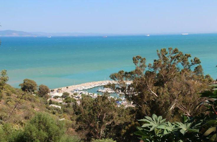 Perché andare e cosa vedere a Sidi Bou Said       Tunisia, Sidi Bou Said - Perché andare e cosa vedere a Sidi Bou Said          Perché and...