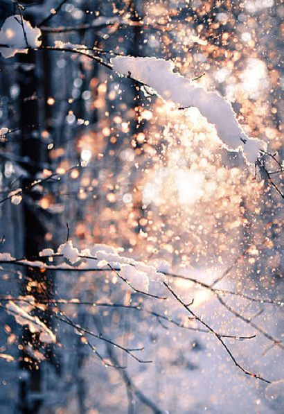 Recouvert d'une jolie couche de neige...