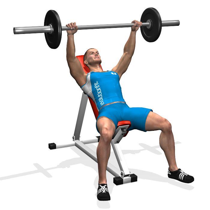 Le développé incliné à la barre travaille, principalement, sur la partie haute du grand pectoral, impliquant soit le deltoïde (les épaules) antérieur, soit les triceps.