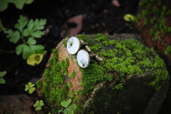 Myosotis arvensis Forget-me-not resin cuff links by SavageSpell