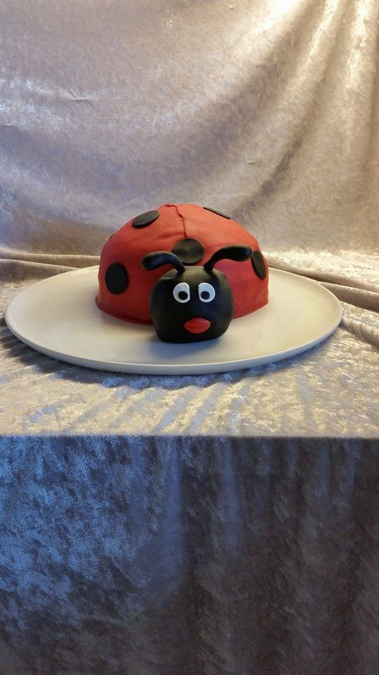 Ladybug for Isabella's 3rd Birthday
