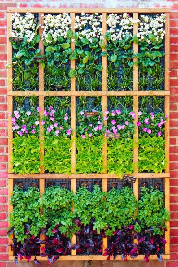 Φυτεύοντας στον τοίχο