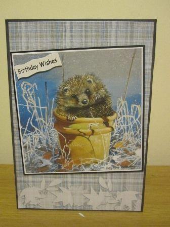 Creative Crafting world Pollyanna Pickering British wildlife CD