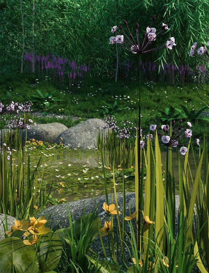 Wild Flowers Water Plants Vol 1 Daz 3d Models 3d Cg