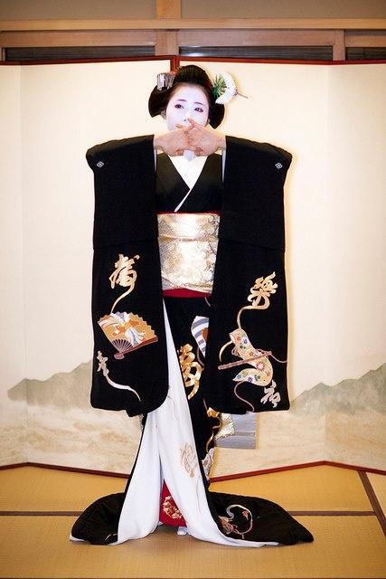 Maiko: 舞子 #japan #japanese #kimono