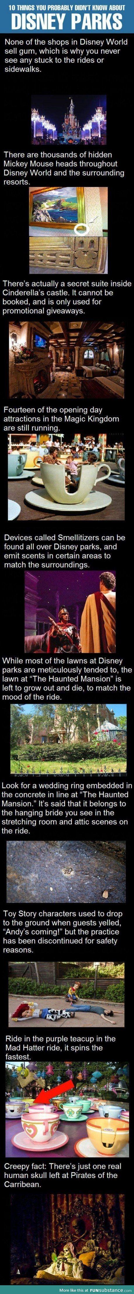 Disney world facts