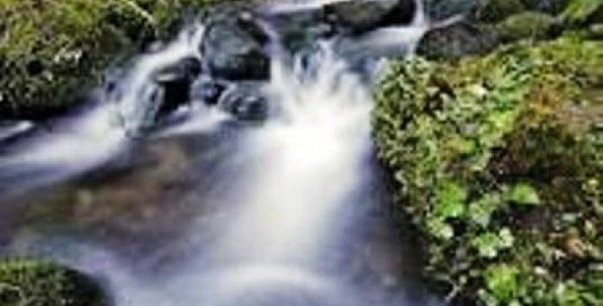 Rivers flow unambiguously tracing its own path, learn from it