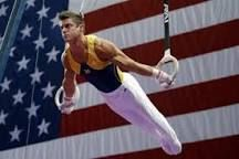 Image result for men olympic gymnasts