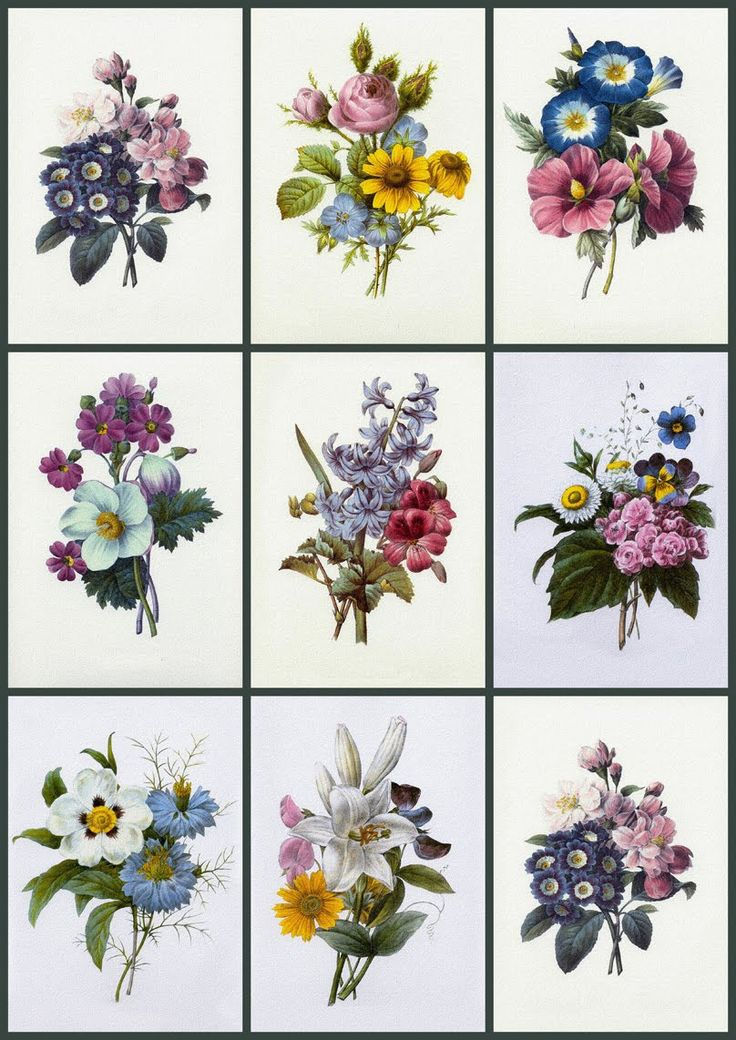 ArtbyJean - Paper Crafts: Vintage flower prints on digital collage sheets.