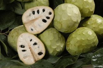 Deliciosa merienda, desayuno o postre! La chirimoya, un producto delicado que en la Costa Tropical de Granada y Málaga / The custard apple is a delicate product, which in the Costa Tropical of Granada and Malaga