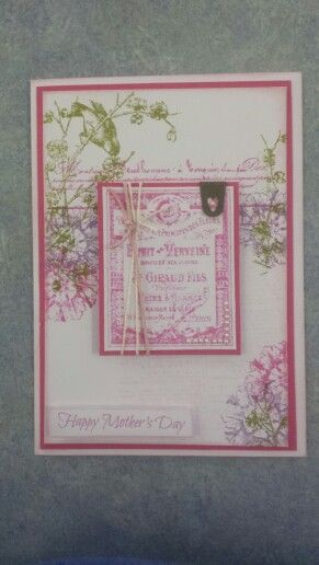 Kaszazz - Using Esprit Viveine Stamps in Picked Raspberry,  Dusty Concord and Peeled Paint.