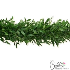 Fresh italian ruscus garlands make beautiful wedding day decorations. Garlands are an easy and affordable way to decorate aisle runners, arbors, stairways, doorways. mantelpieces and much more. Take advantage of FREE SHIPPING on your fresh garlands! $139