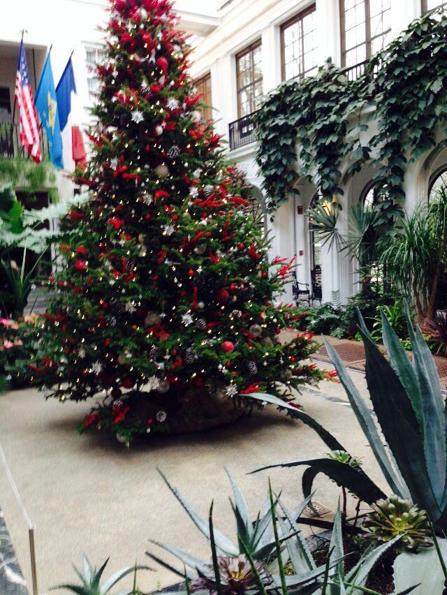 2014 Christmas at Longwood Gardens. Large Cardinal ...