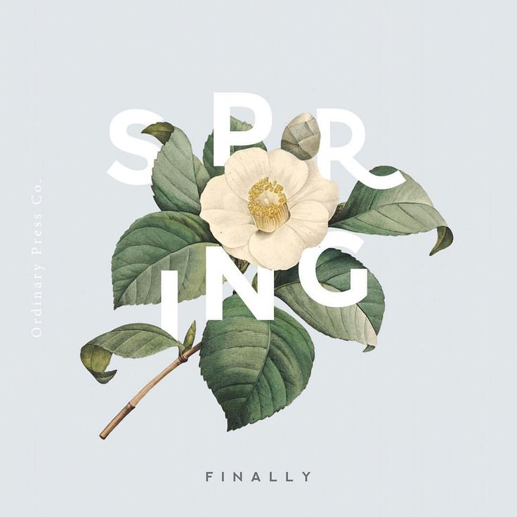 #spring #typography by Ordinary Press Co.