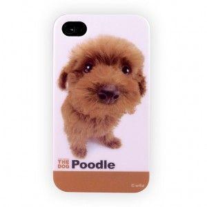 "Coques rigides iPhone 4s Caniche ""Poodle"""