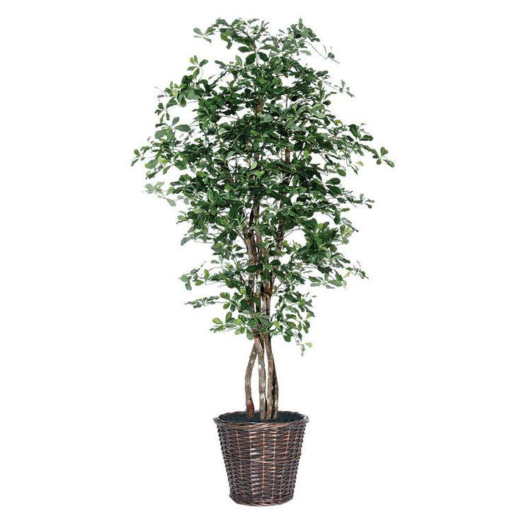 Vickerman Black Olive Executive 6-foot Silk/ Polyester Decorative Plant (6' Black Olive Executive)