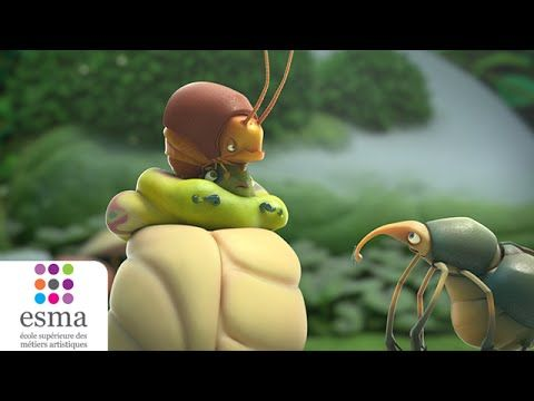 Sweet Cocoon (Oscars 2015 - Nominated Short Films) - YouTube