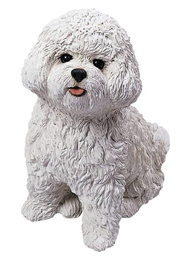 Original Size Bichon Frise Sculpture Dog Sculpture Bichon Frise Bichon