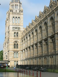 Natural History Museum & other museum information, London.