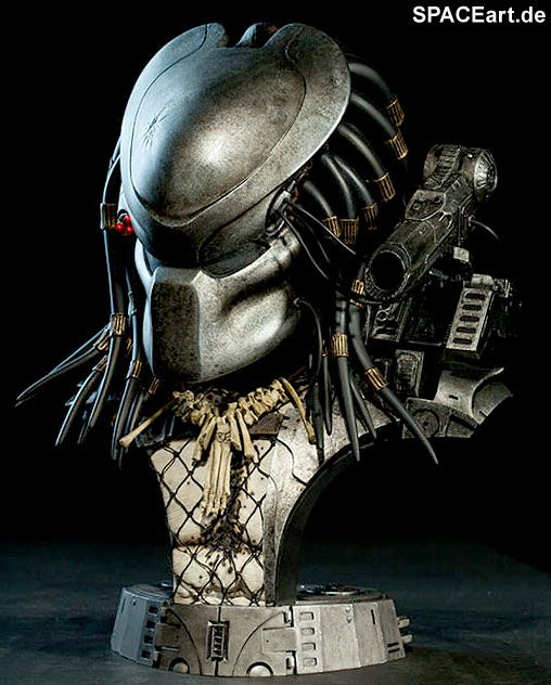 25+ Best Ideas About Predator 1 On Pinterest